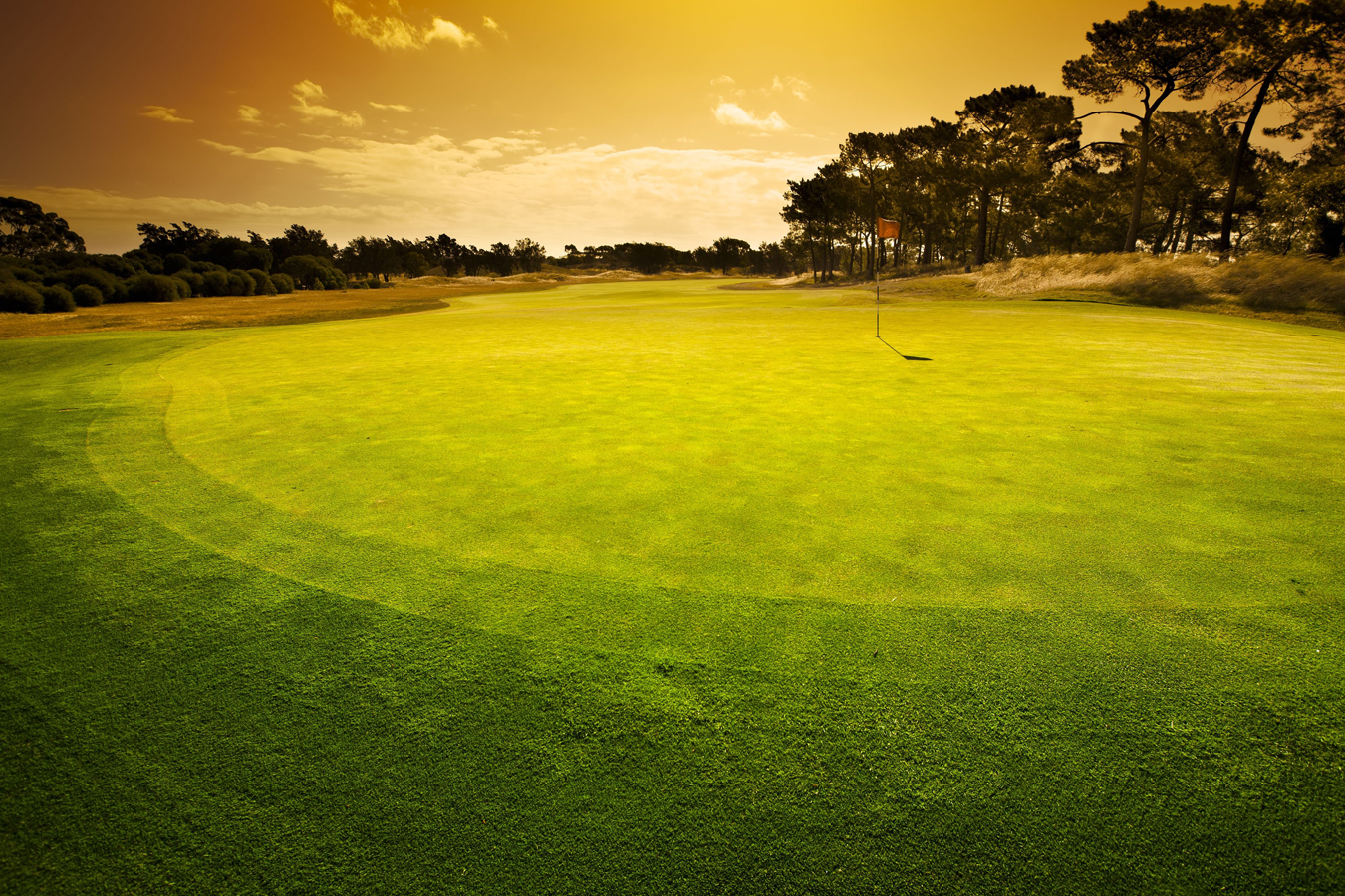 Image of Sunny Golf Green